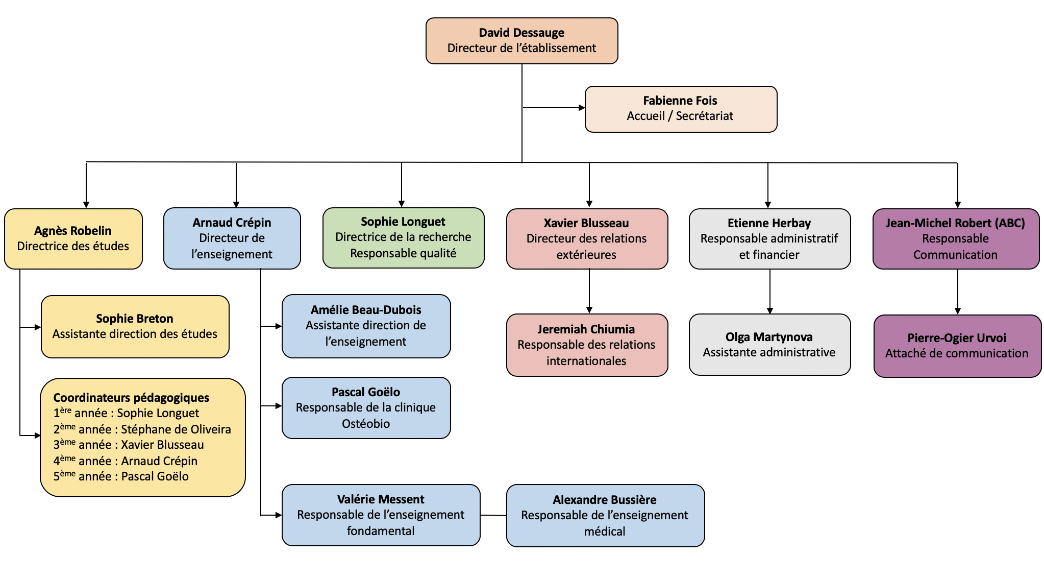 organigramme Ostéobio